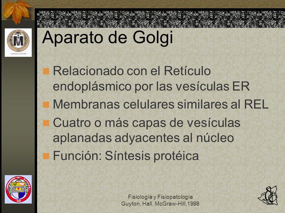 Aparato de Golgi Relacionado con el Retículo endoplásmico por las vesículas ER. Membranas celulares similares al REL.