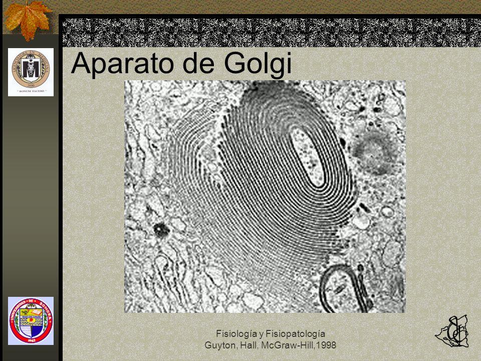 Aparato de Golgi Fisiología y Fisiopatología