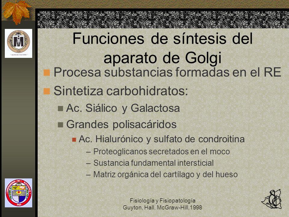 Funciones de síntesis del aparato de Golgi