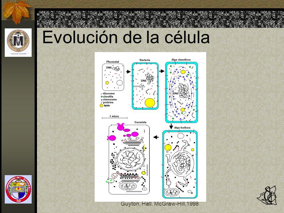 Evolución de la célula Fisiología y Fisiopatología