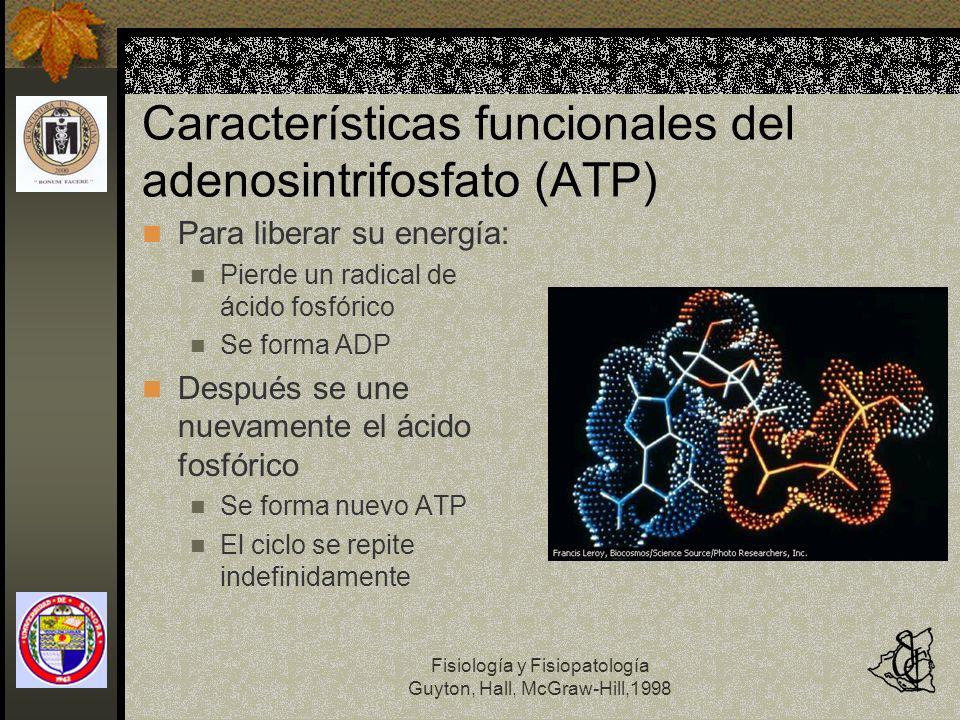 Características funcionales del adenosintrifosfato (ATP)