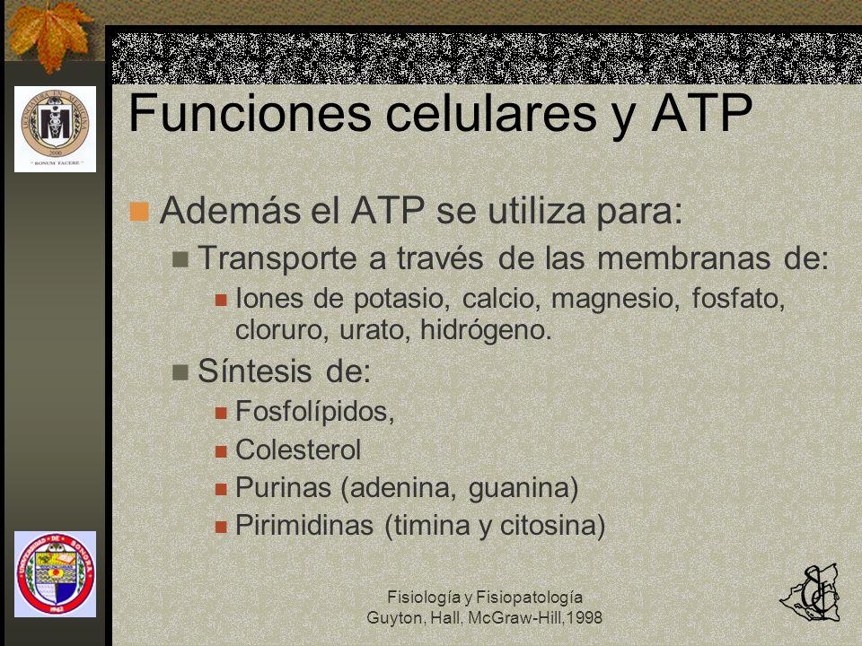 Funciones celulares y ATP