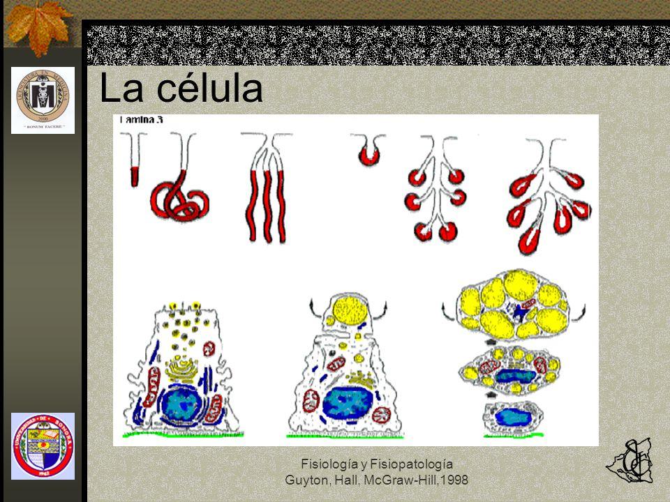 La célula Fisiología y Fisiopatología Guyton, Hall, McGraw-Hill,1998