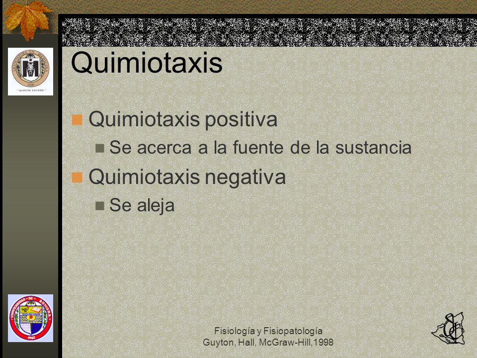 Quimiotaxis Quimiotaxis positiva Quimiotaxis negativa