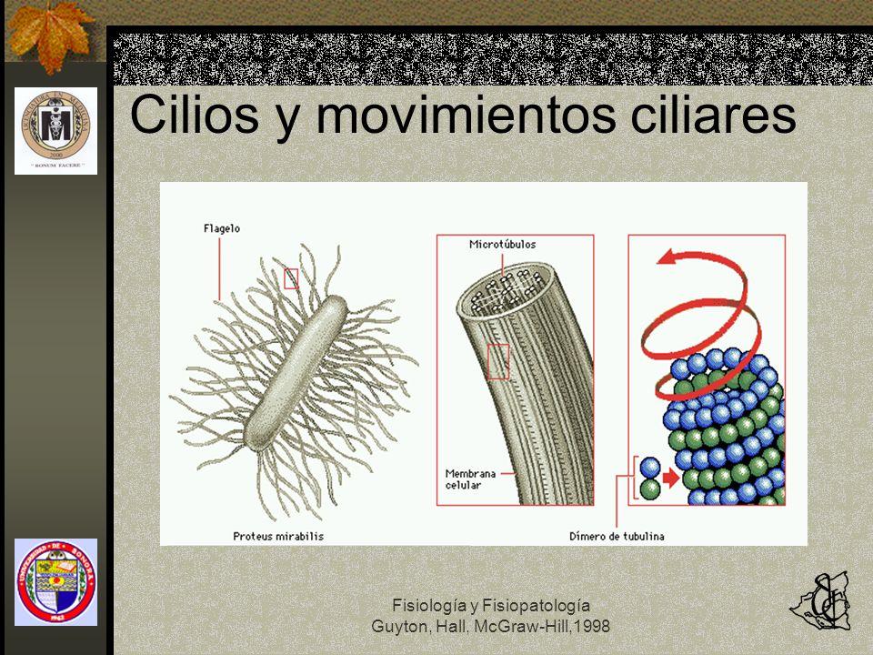 Cilios y movimientos ciliares