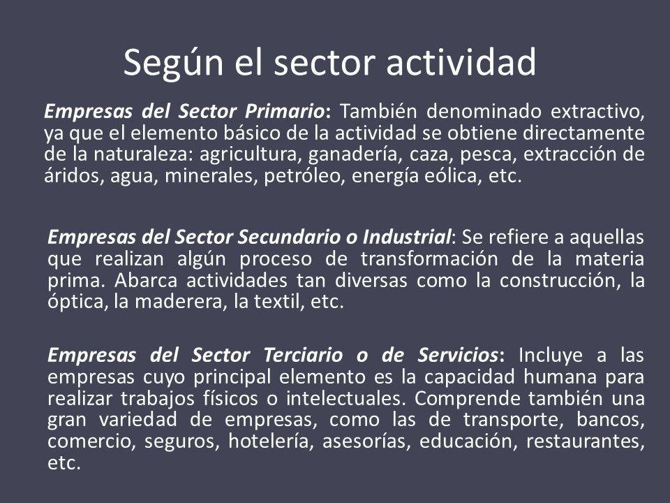 Según el sector actividad
