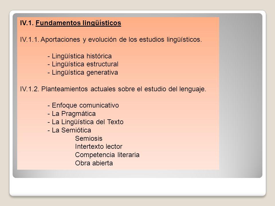 IV.1. Fundamentos lingüísticos