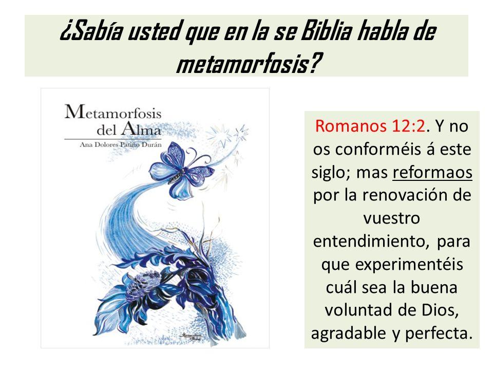 ¿Sabía usted que en la se Biblia habla de metamorfosis