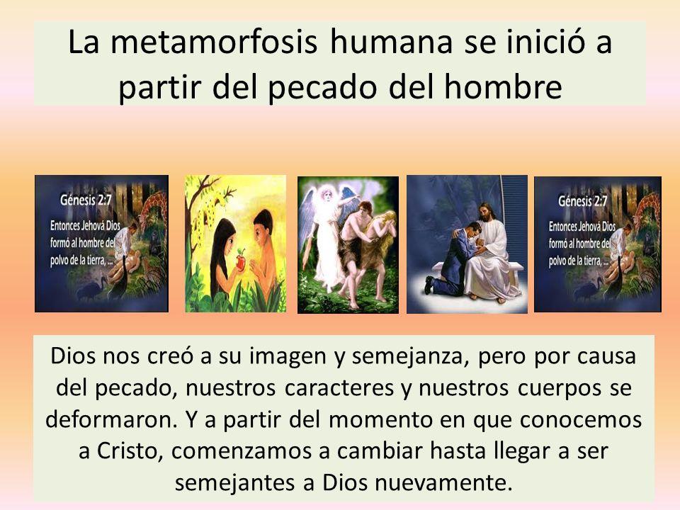 La metamorfosis humana se inició a partir del pecado del hombre