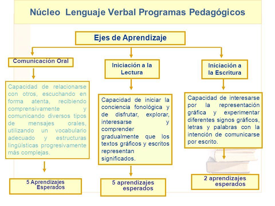 Núcleo Lenguaje Verbal Programas Pedagógicos