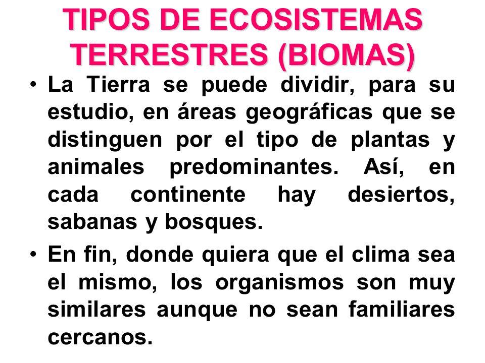 TIPOS DE ECOSISTEMAS TERRESTRES (BIOMAS)