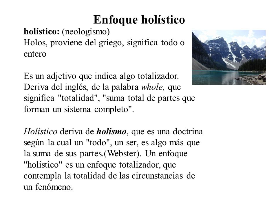 Enfoque holístico holístico: (neologismo)