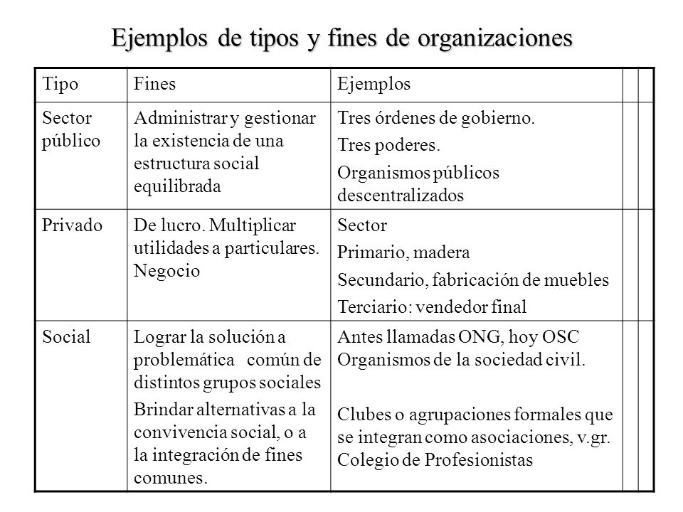 Ejemplos de tipos y fines de organizaciones