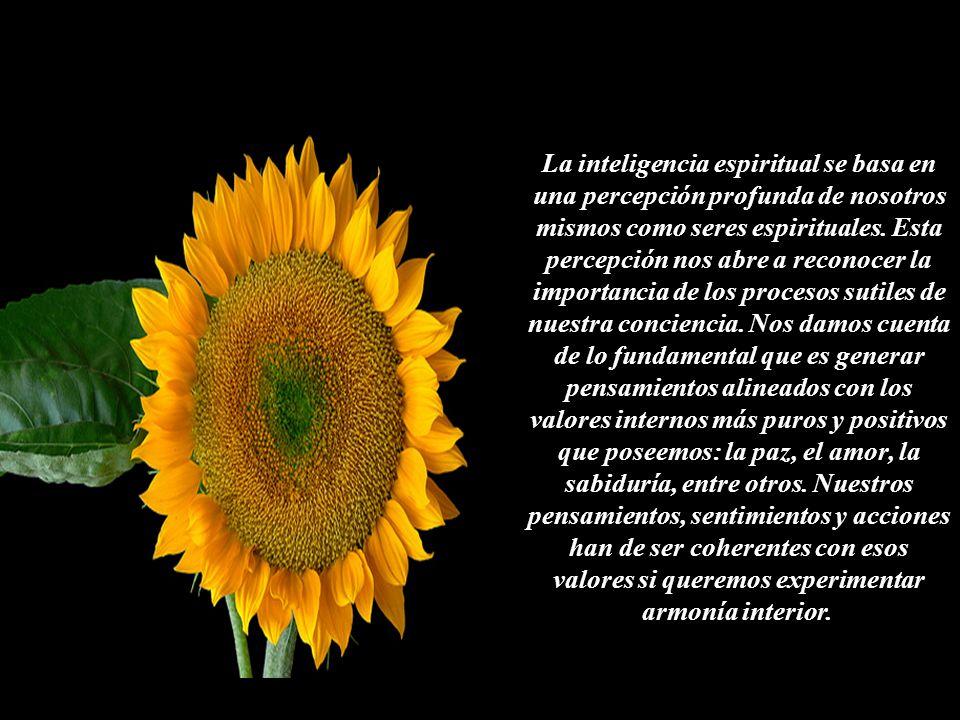 La inteligencia espiritual se basa en una percepción profunda de nosotros mismos como seres espirituales.