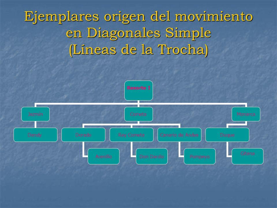 Ejemplares origen del movimiento en Diagonales Simple (Líneas de la Trocha)