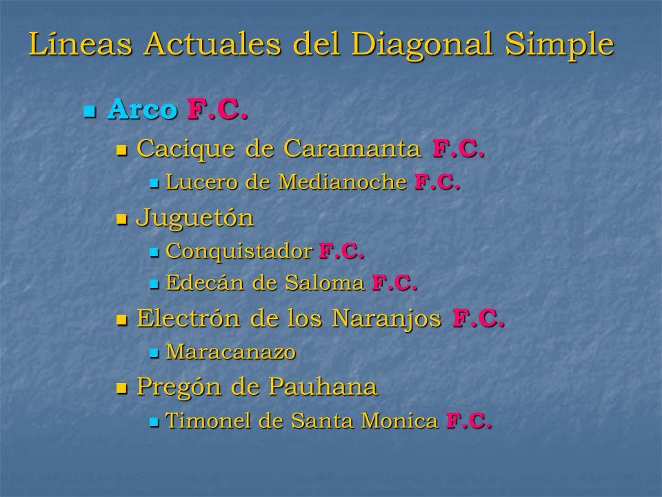 Líneas Actuales del Diagonal Simple