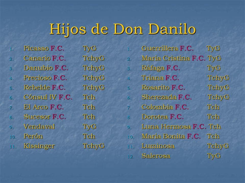 Hijos de Don Danilo Picasso F.C. TyG Canario F.C. TchyG