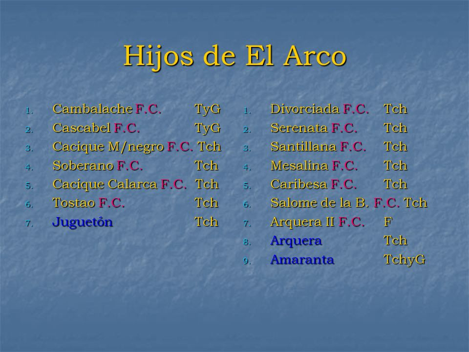 Hijos de El Arco Cambalache F.C. TyG Cascabel F.C. TyG