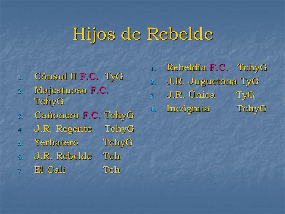 Hijos de Rebelde Rebeldía F.C. TchyG J.R. Juguetona TyG