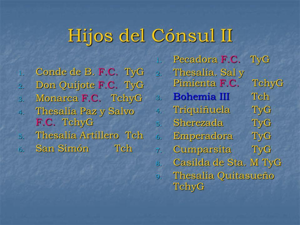 Hijos del Cónsul II Pecadora F.C. TyG