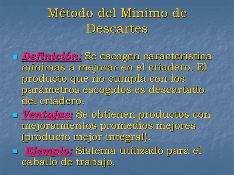 Método del Mínimo de Descartes