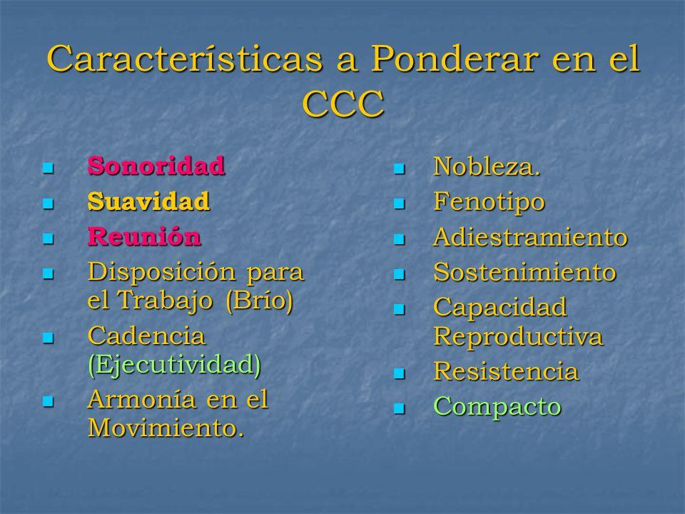 Características a Ponderar en el CCC