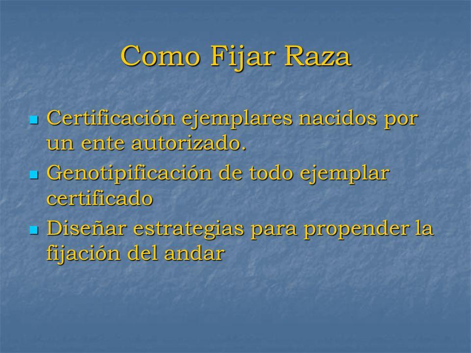 Como Fijar RazaCertificación ejemplares nacidos por un ente autorizado. Genotipificación de todo ejemplar certificado.