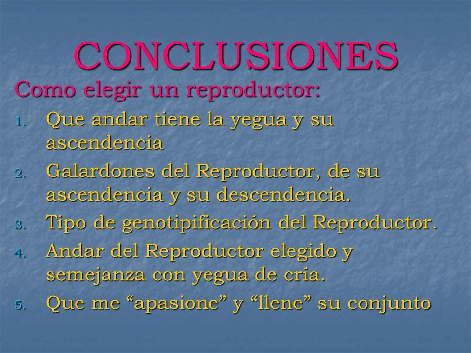 CONCLUSIONES Como elegir un reproductor: