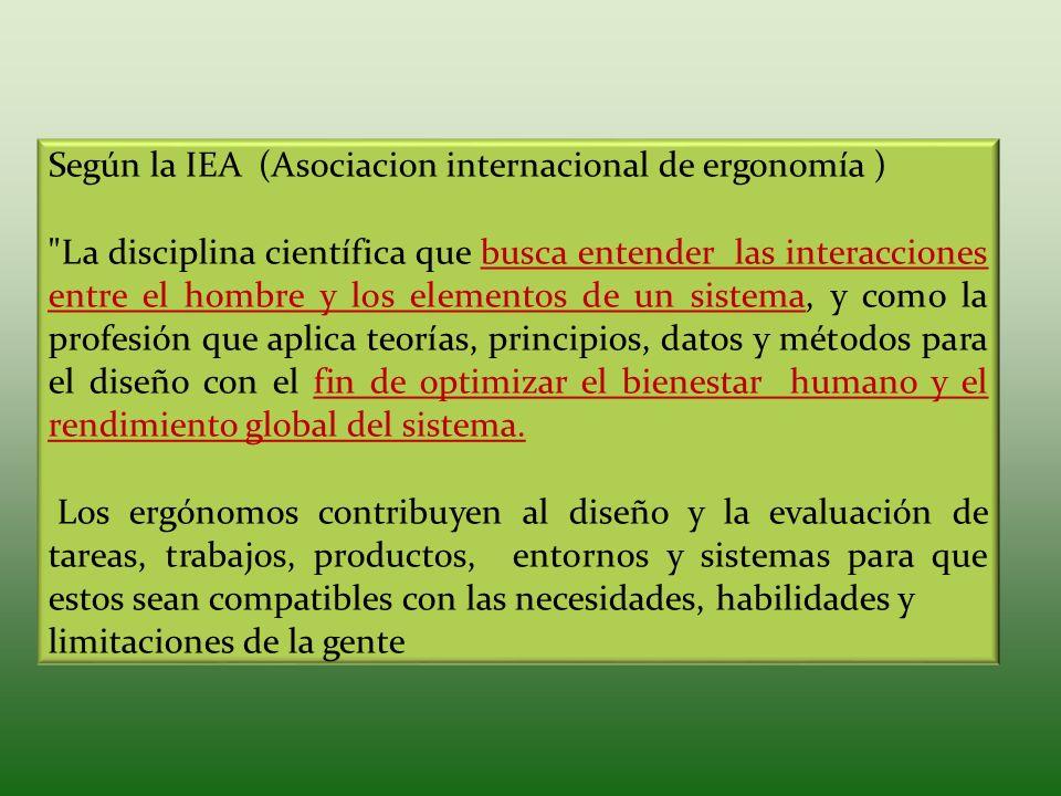 Según la IEA (Asociacion internacional de ergonomía )