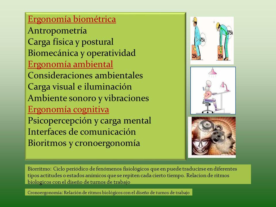 Carga física y postural Biomecánica y operatividad Ergonomía ambiental
