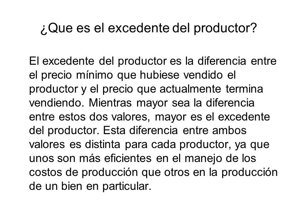 ¿Que es el excedente del productor
