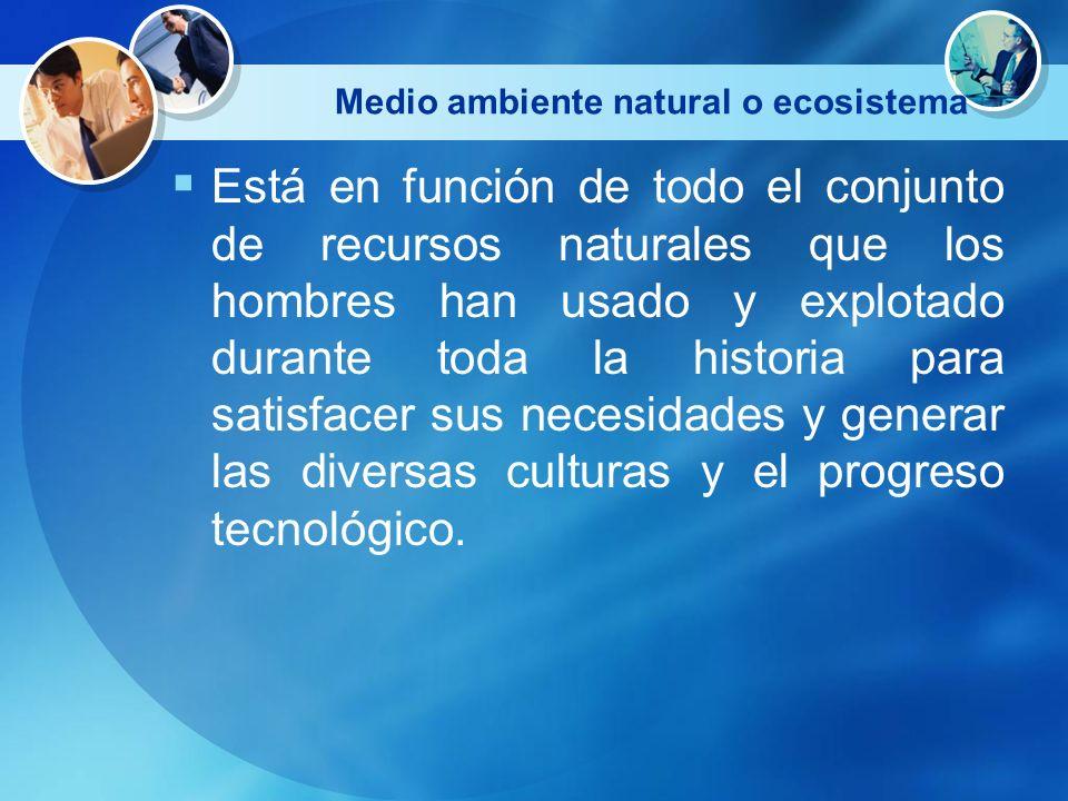Medio ambiente natural o ecosistema