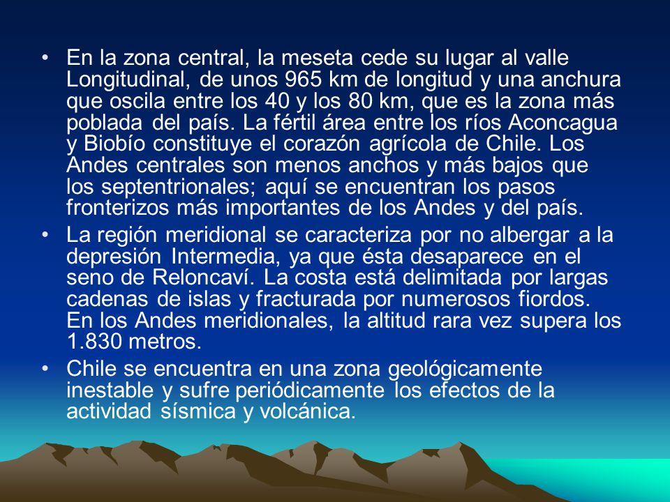 En la zona central, la meseta cede su lugar al valle Longitudinal, de unos 965 km de longitud y una anchura que oscila entre los 40 y los 80 km, que es la zona más poblada del país. La fértil área entre los ríos Aconcagua y Biobío constituye el corazón agrícola de Chile. Los Andes centrales son menos anchos y más bajos que los septentrionales; aquí se encuentran los pasos fronterizos más importantes de los Andes y del país.