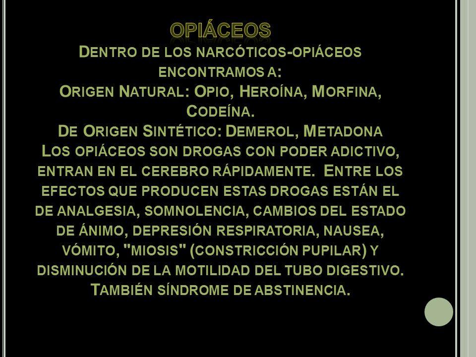 Opiáceos Dentro de los narcóticos-opiáceos encontramos a: Origen Natural: Opio, Heroína, Morfina, Codeína.