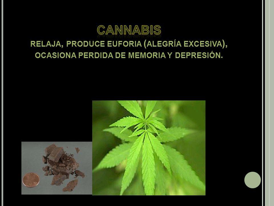 Cannabis relaja, produce euforia (alegría excesiva), ocasiona perdida de memoria y depresión.