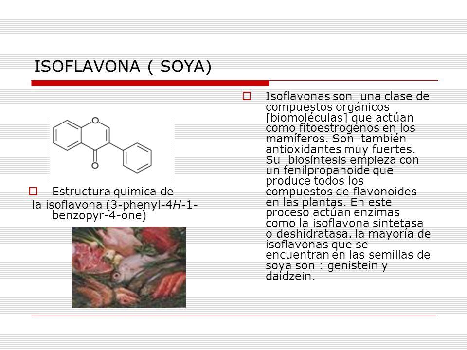 ISOFLAVONA ( SOYA)