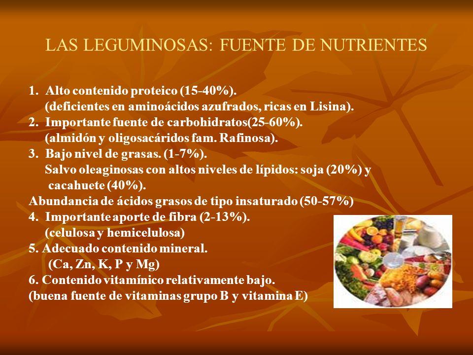 LAS LEGUMINOSAS: FUENTE DE NUTRIENTES