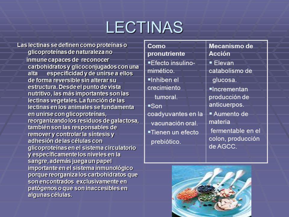 LECTINAS Como pronutriente Efecto insulino-mimético.