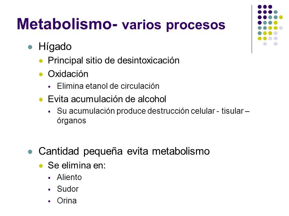 Metabolismo- varios procesos