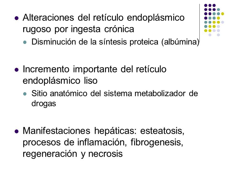 Alteraciones del retículo endoplásmico rugoso por ingesta crónica