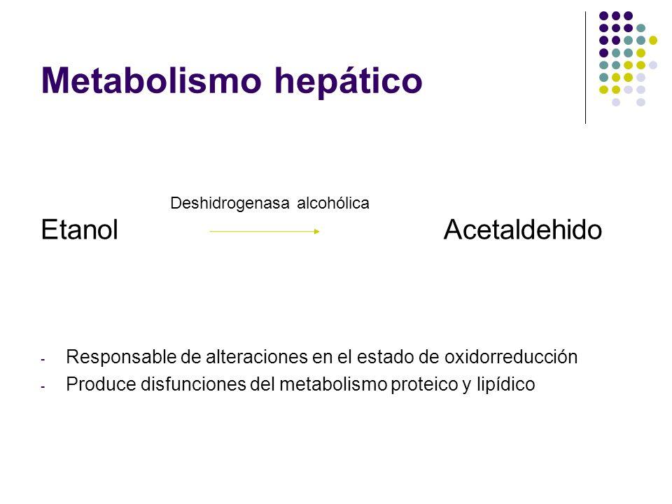 Metabolismo hepático Etanol Acetaldehido