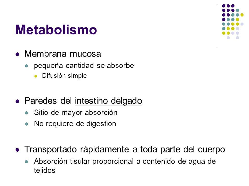 Metabolismo Membrana mucosa Paredes del intestino delgado