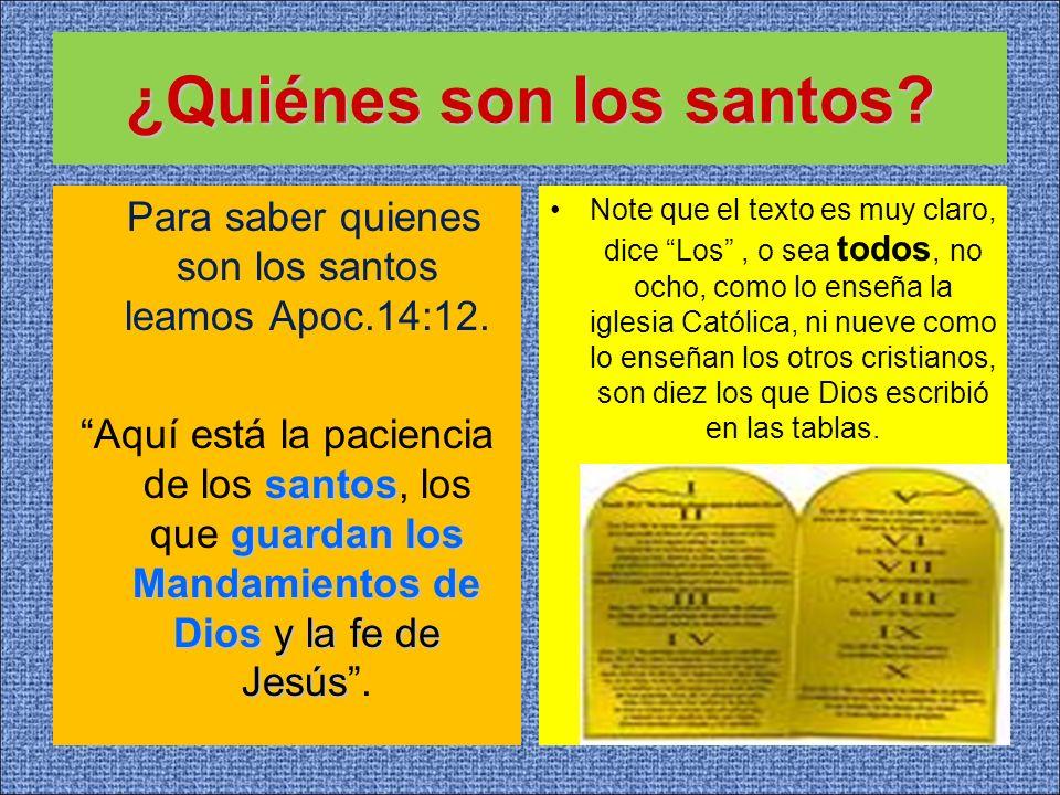 ¿Quiénes son los santos