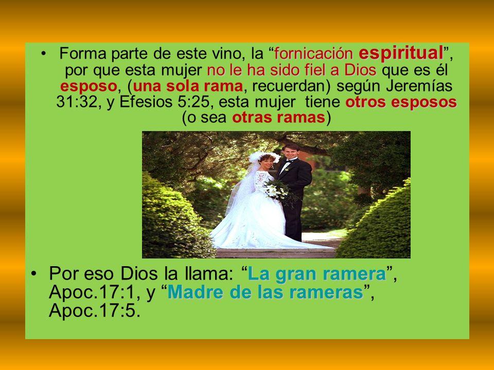 Forma parte de este vino, la fornicación espiritual , por que esta mujer no le ha sido fiel a Dios que es él esposo, (una sola rama, recuerdan) según Jeremías 31:32, y Efesios 5:25, esta mujer tiene otros esposos (o sea otras ramas)