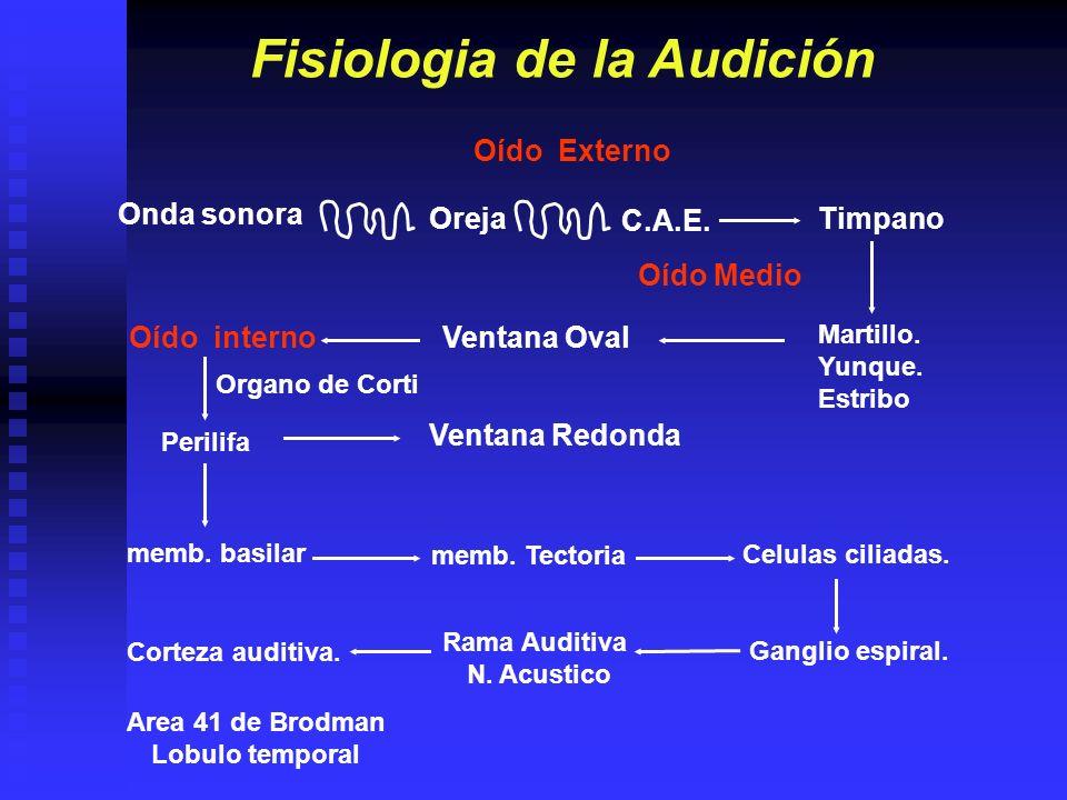 Fisiologia de la Audición
