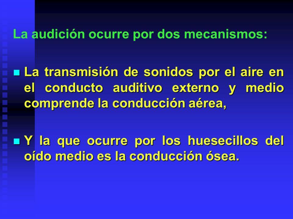 La audición ocurre por dos mecanismos: