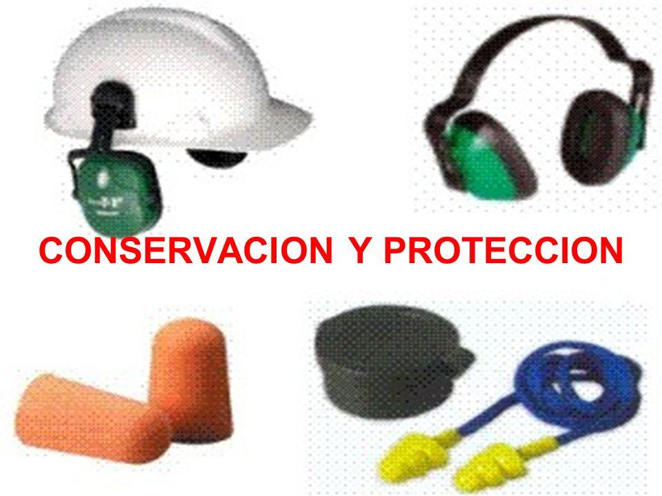CONSERVACION Y PROTECCION