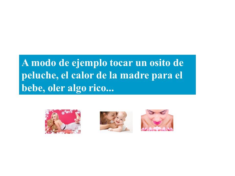 A modo de ejemplo tocar un osito de peluche, el calor de la madre para el bebe, oler algo rico...
