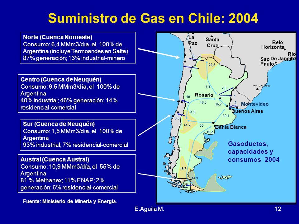 Suministro de Gas en Chile: 2004