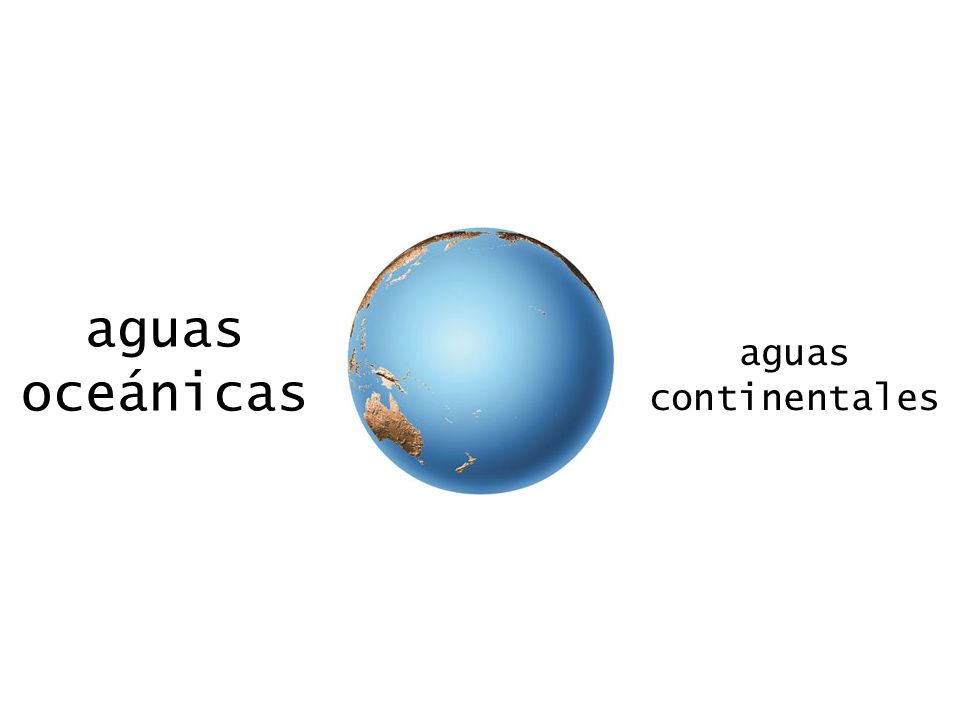 aguas oceánicas aguas continentales